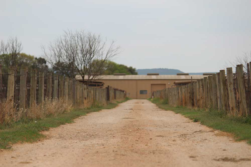 JPs-Bacacita-Farms-pastures