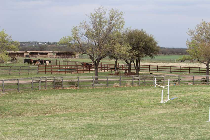 facility-bacacita-farms-pasture