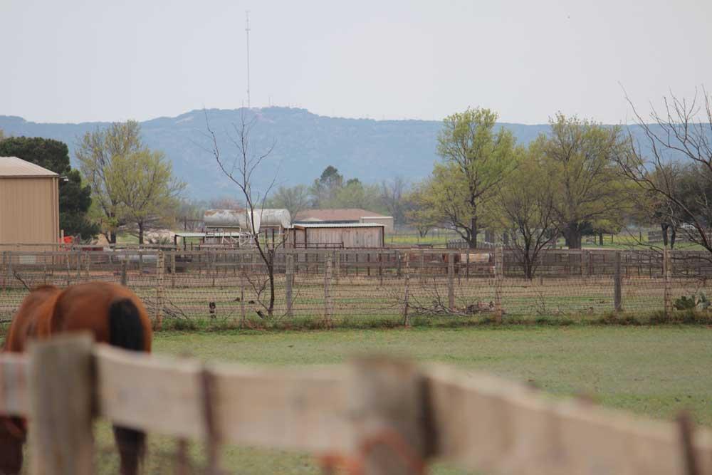 pasture-board-jps-bacacita-farms